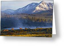 Yellowstone Morning Greeting Card