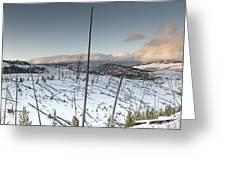 Yellowstone Morning Greeting Card by David Yack