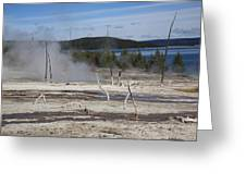 Yellowstone National Park - Hot Springs Greeting Card