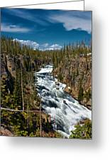 Yellowstone National Park Lewis River Greeting Card