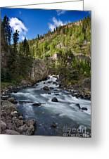 Yellowstone National Park Waterfall Greeting Card