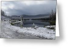 Yellowstone Snow Greeting Card by Diane Mitchell