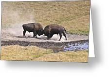 Yellowstone Turf War Greeting Card