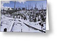 Yellowstone Winter Greeting Card by David Yack