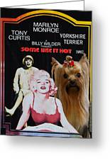 Yorkshire Terrier Art Canvas Print - Some Like It Hot Movie Poster Greeting Card