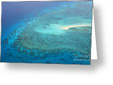 You Found Me Great Barrier Reef Australia  Greeting Card