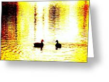 You Light Up My Life, We Shall Swim Together Forever   Greeting Card