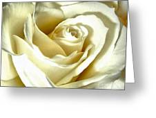 You May Kiss The Bride Greeting Card