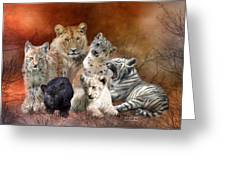 Young And Wild Greeting Card