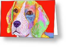 Young Beagle  Greeting Card