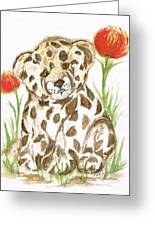 Young Cub Leopard Greeting Card
