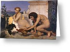 Young Greeks Attending A Cock Fight Greeting Card