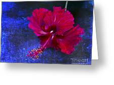 Young Passion... Greeting Card