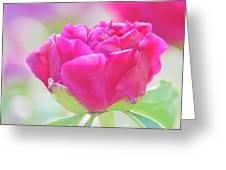 Young Peony Greeting Card