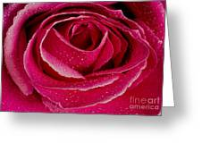 Your Fresh One Greeting Card
