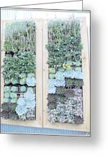 Your Garden Wall Greeting Card