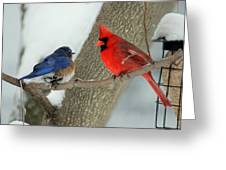 Your Nest Or Mine Greeting Card