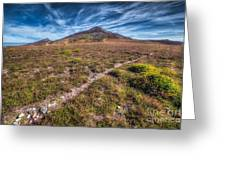 Yr Eifl Trail Greeting Card by Adrian Evans
