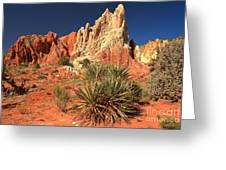 Yucca Badlands And Colors Greeting Card