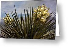 Yucca Blooms Greeting Card