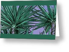 Yucca Tops Greeting Card