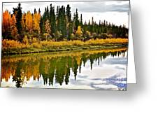 Yukon Autumn Greeting Card