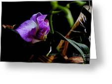 Yuneah's Flower Greeting Card