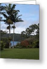 Yungaburra Lake View Greeting Card