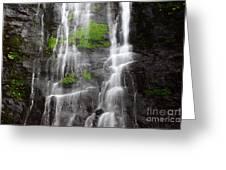 Yungas Waterfall Detail Greeting Card