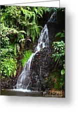 Yungas Waterfall Greeting Card