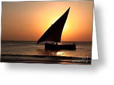 Zanzibar Sunset 22 Greeting Card by Giorgio Darrigo