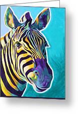 Zebra - Sunrise Greeting Card