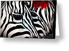 Zebra Couple Greeting Card