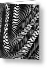 Zebra Folds Greeting Card