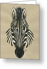 Zebra Front Greeting Card