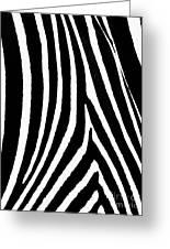 Zebra Hide Greeting Card