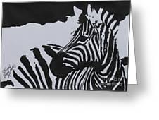 Zebra Greeting Card