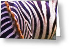 Zebra Lines Greeting Card