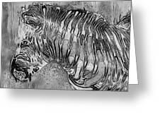 Zebra - Rainy Day Series Greeting Card
