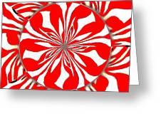 Zebra Red Swirling Kaleidoscope  Greeting Card