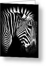 Zebra Strips Greeting Card