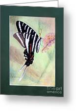 Zebra Swallowtail Butterfly By George Wood Greeting Card