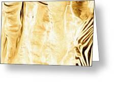 Zebra Up Closer Greeting Card