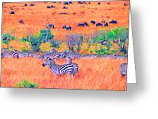 Zebras Above The Beast Greeting Card