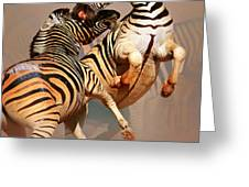 Zebras Fighting Greeting Card by Johan Swanepoel