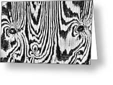 Zebras In Wood Greeting Card
