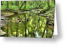 Zen In The Forest Greeting Card