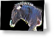 Zephyrus Zebra II Greeting Card