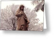 Ziba King Memorial Statue Front View Florida Usa Near Infrared Se Greeting Card
