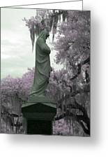 Ziba King Memorial Statue Side View Florida Usa Near Infrared Gr Greeting Card